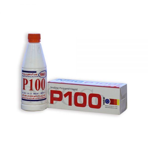 رزین سنگ و نما NSG-P100 ظرف 300 سی سی